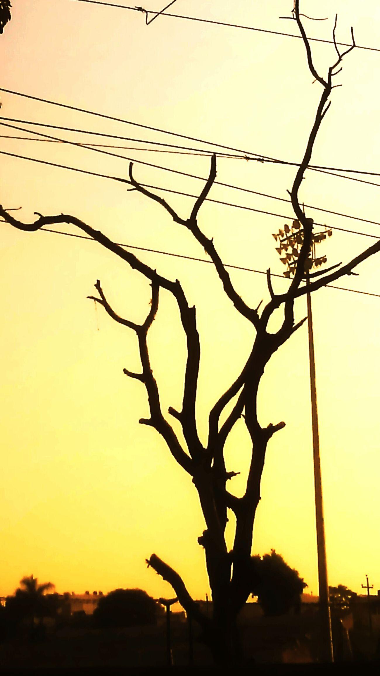 Shot by 3.7 Mp camera Snag Randomshot Photopassion Nature