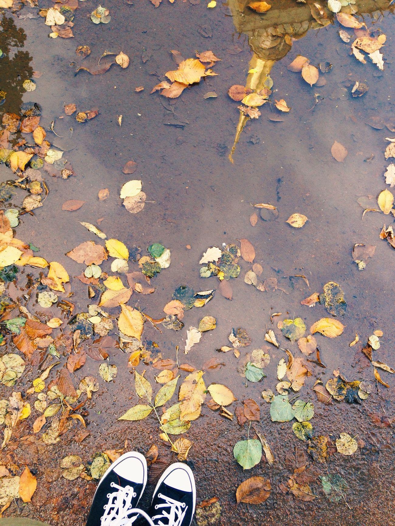 настроение осень Autumn Питер
