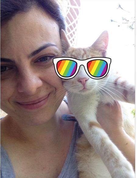 Dogallik Yellowcat Kedim  Karizma Mi Ne Domestic Cat Domestic Animals Hello World Beatiful Animal Eyemphotography Istanbuldayasam Istanbul Turkey Women Mycat Animal Photography EyeEmAnimalLover kedilerim benden daha karizmatik 😂 🐾🐾
