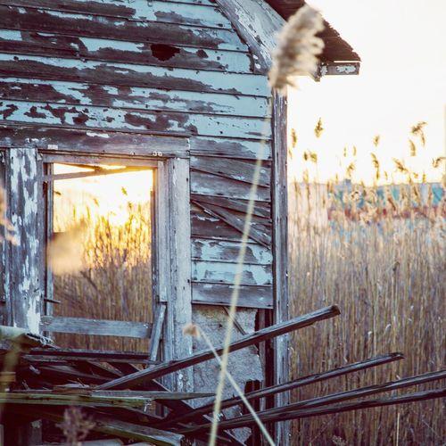 Dilapidating house sinking into the marshlands that surround Giants stadium Exploring abandoned