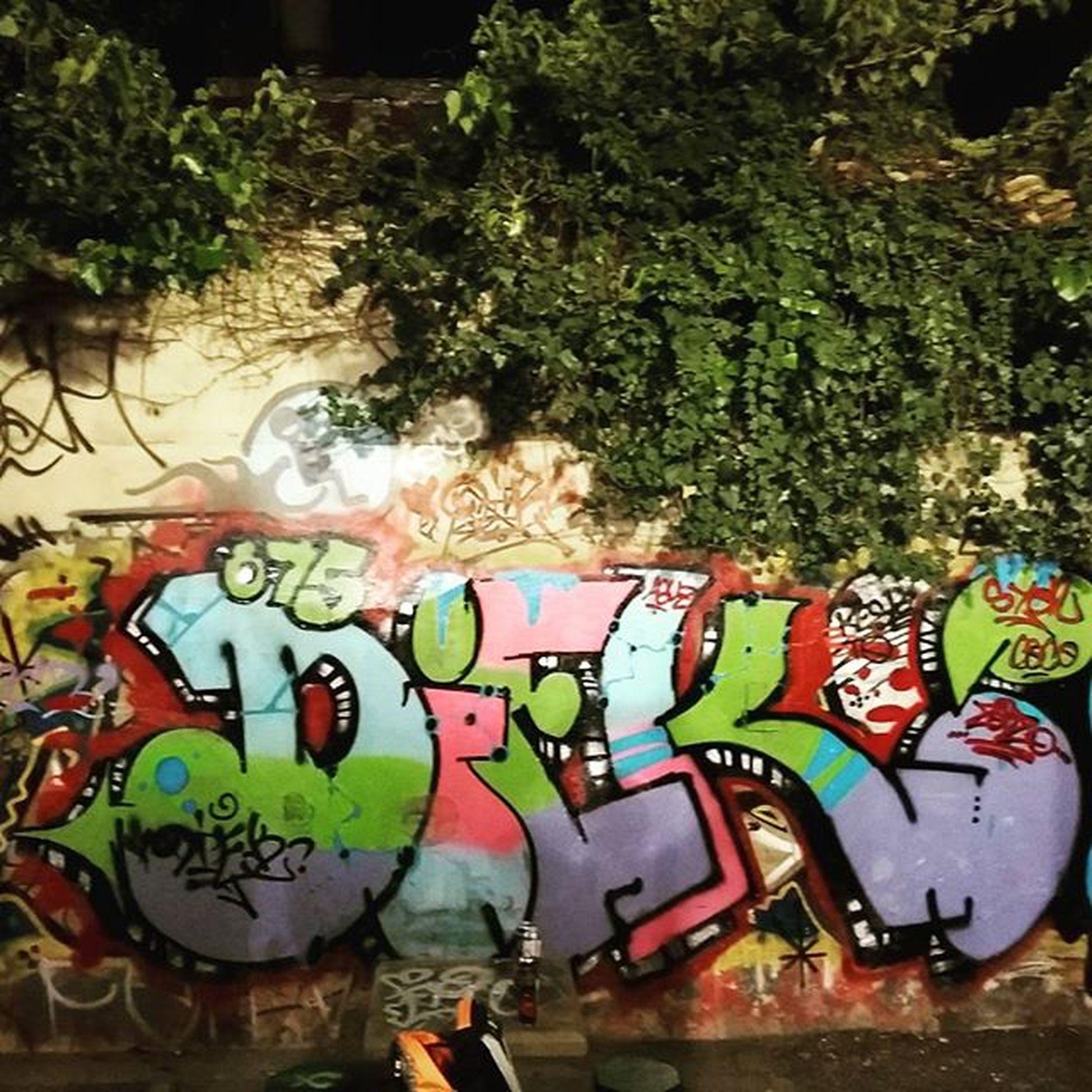 Diek2 Graffiti LaGurru Syon Partner Friend Floridico Buena forma de termina el finde con los pibes