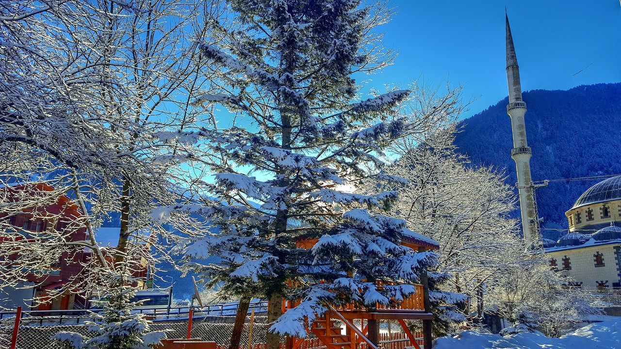 Global Communications Cold Temperature Leisure Activity Travel Destinations One Person Trabzon Uzungol Turkey Nature Uzungöl Vacations Animals In The Wild Connection Beauty In Nature Close-up Huzur Communication No People Snowing Winter Match - Sport Spider Web Sunlight Technology Internet Flying Sky