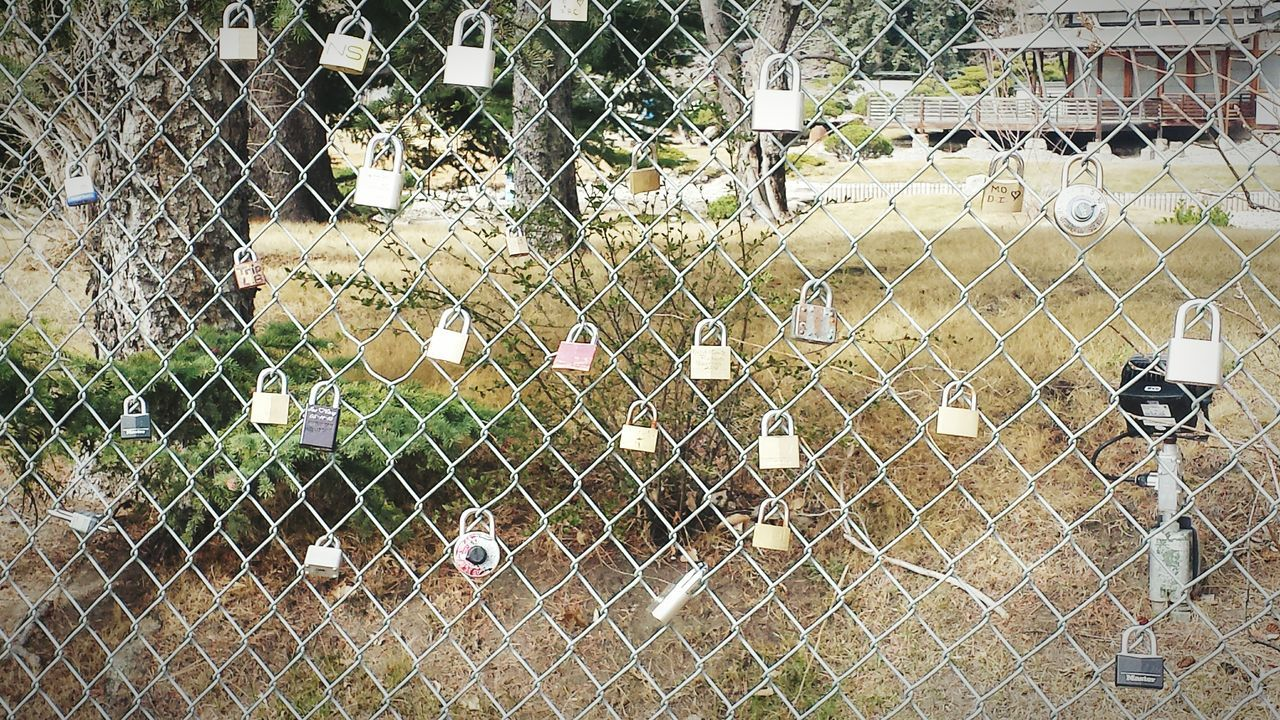 chainlink fence, protection, safety, security, metal, day, outdoors, no people, animal themes, close-up