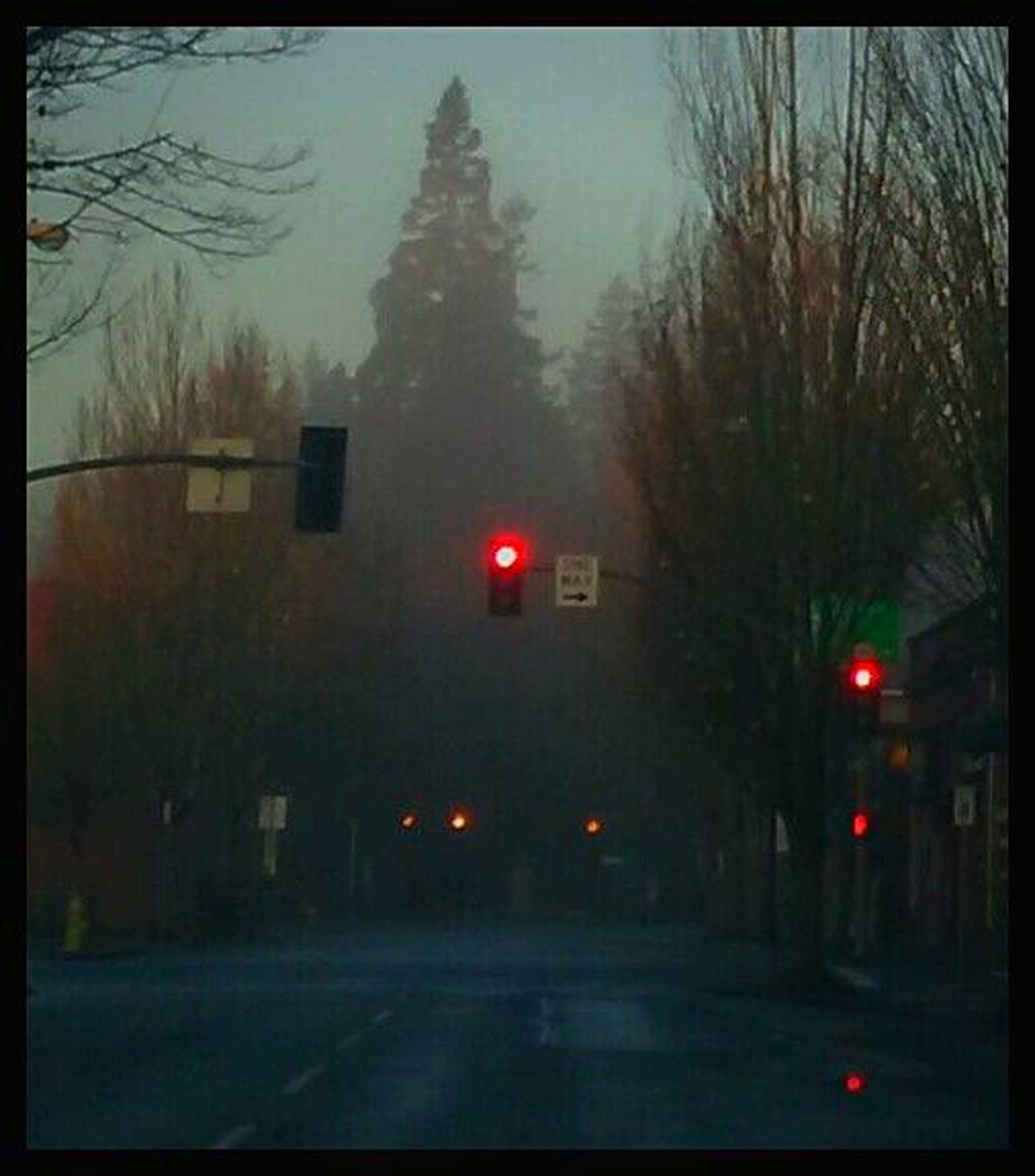Outdoors Illuminated Transportation Traffic Signal City Bare Tree Red Light Fog Foggyness 3rd Street Morning Fog Thick Fog Lit Up With Lights Idyllic EyeEm Gallery Capturing Magic Streemzoofamily Getty Images Focus On Foreground Architecture Old Towncenter Nostalgic Place Down Town Night Early Morning Mist