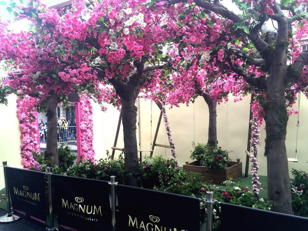 Magnum Event London Ice Cream #blossom Flowers Trees