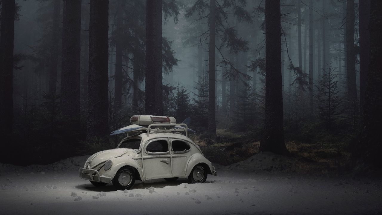 Tree WoodLand Forest Car Toyphotography toy Volkswagen Beetle