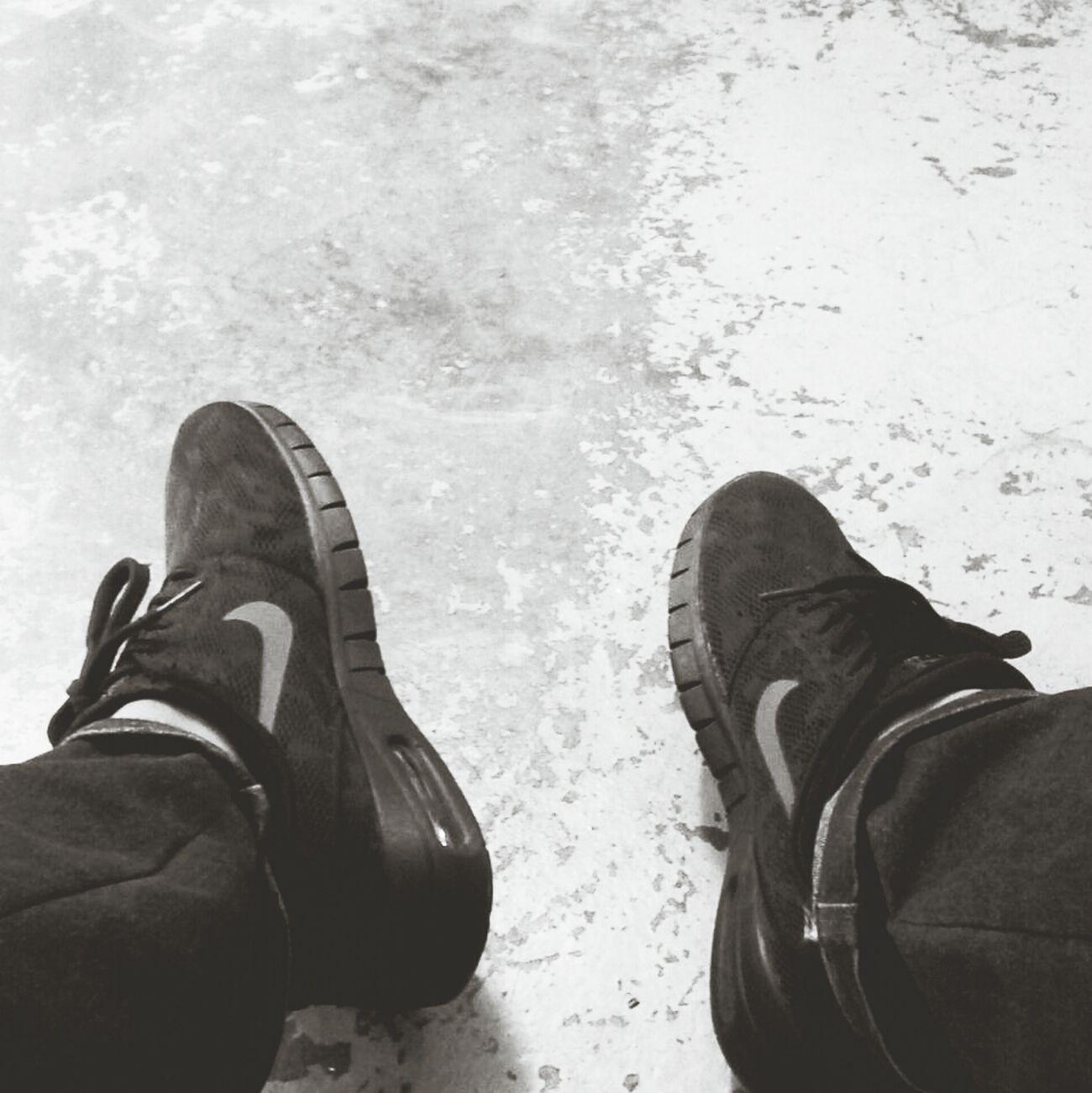 New NikeSB #nikesb #sneakers