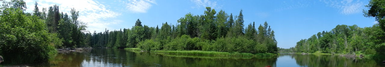 Au Sable River Bend Panoramic Au Sable River Beauty In Nature Blue Calm Day Forest Green Green Color Growth Idyllic Landscape Lush Foliage Michigan Nature No People The Great Outdoors - 2016 EyeEm AwardsOutdoors Reflection River Scenics Tranquil Scene Tranquility Tree Water The Essence Of Summer