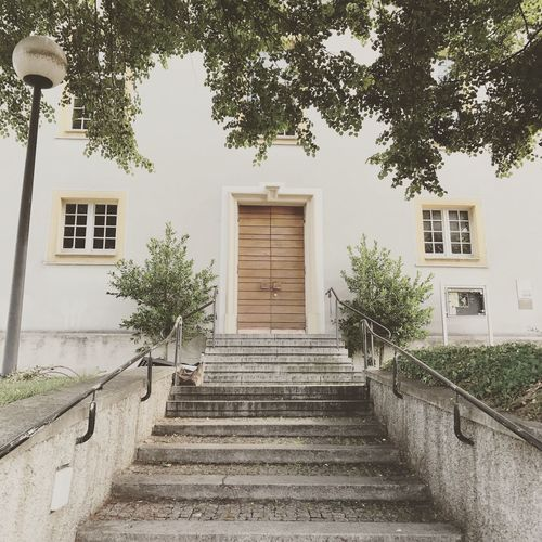Steps Built Structure Architecture Building Exterior Steps And Staircases Staircase Tree Day Outdoors Stairs No People Sky