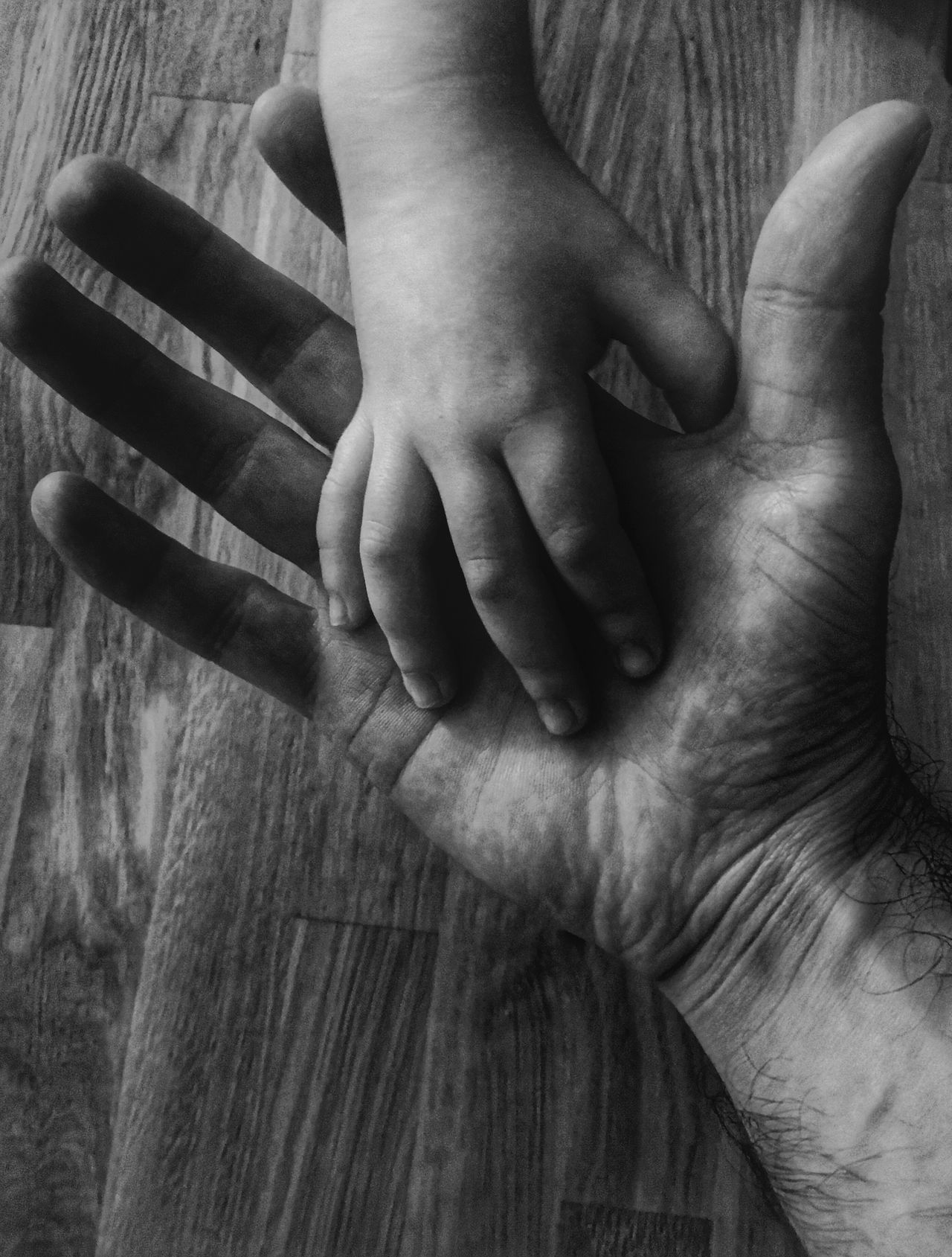 EyEmNewHere Human Hand Childhood One Person Indoors  Men Close-up Human Body Part Day People Hand Fatherhood Moments Father & Son EyeEm Gallery EyeEmNewHere Mobile Conversations Photo Photography Photographer Photoshoot ArtWork Arts Culture And Entertainment Awesome Photooftheday Fragility EyeEmNewHere