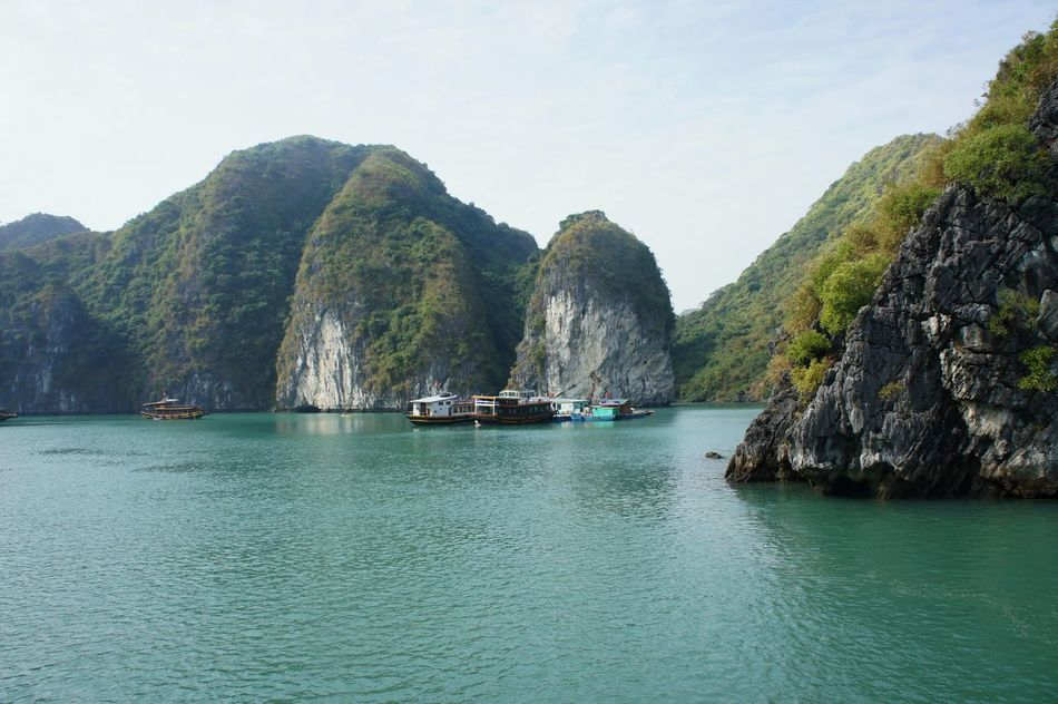 Beauty Beauty In Nature Day Halong Halongbay Idyllic Kayaking Landscape Mountain Nature Nautical Vessel No People Outdoors Sailboat Sailing Scenics Sea Sky Tranquil Scene Tranquility Travel Destinations Tree Vacations Water Yacht