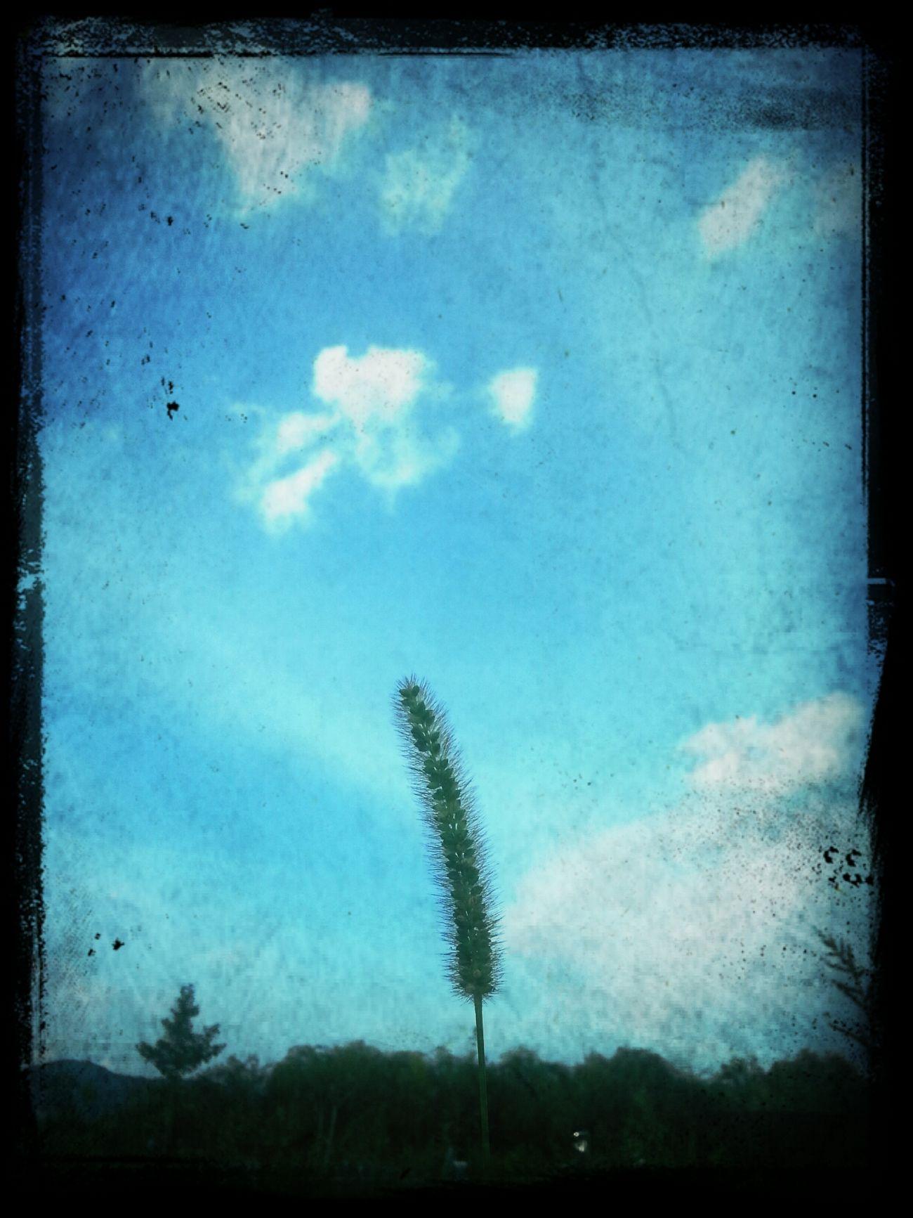 cloude inside u~*-*