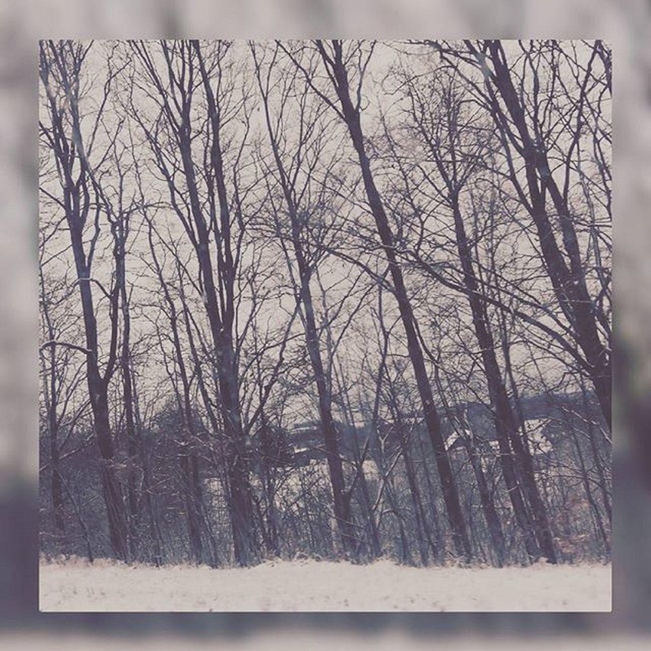 Zimowe Krajobraz_zimowy Uwielbiam Takie Widoczki Chociaż Nielubiezimy