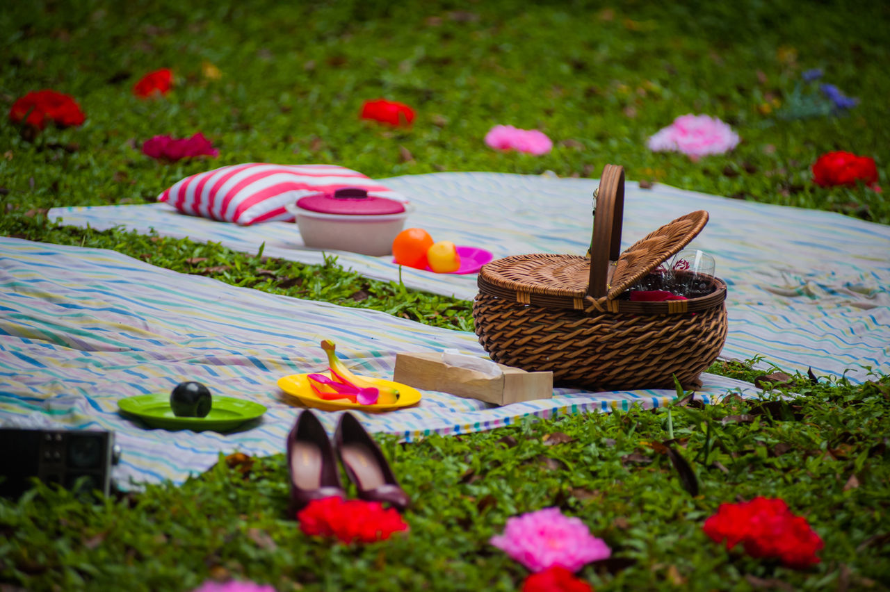 Day Flowers Grass Mat No People Outdoors Picnic Picnic Basket Tradition