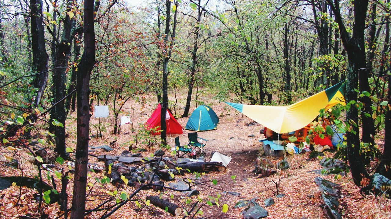 Beautiful stock photos of camping, Camping, Canopy, Chair, Day