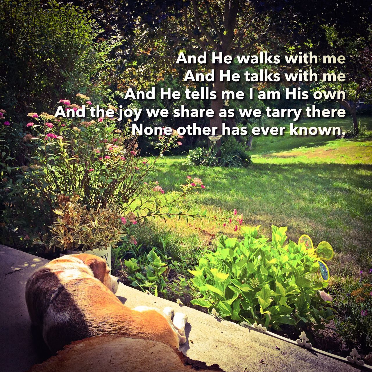 And He walks with me And He talks with me And He tells me I am His own And the joy we share as we tarry there None other has ever known