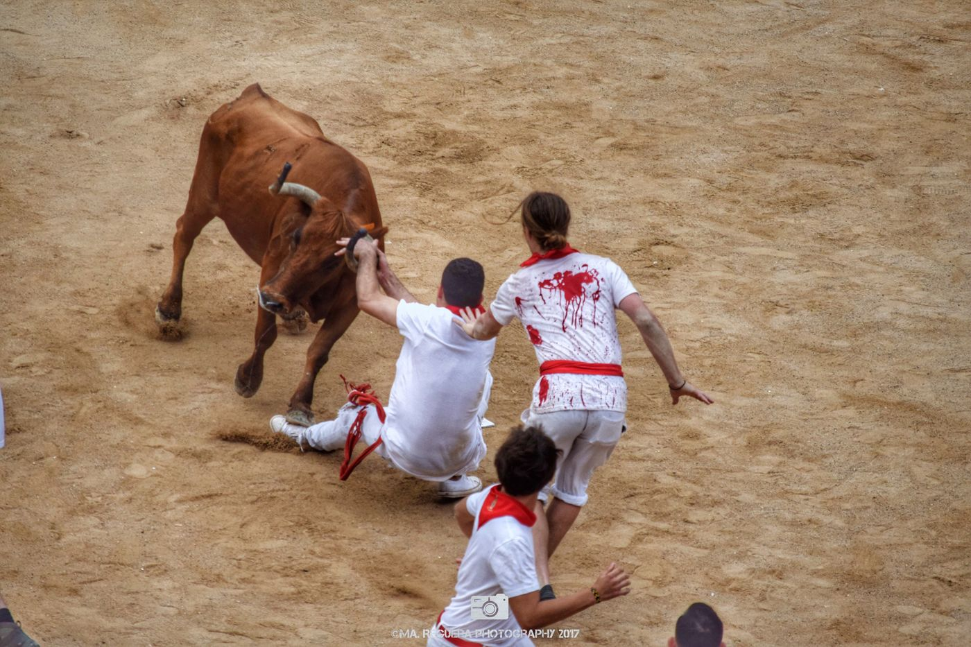La lucha Party San Fermin Pamplona City Navarra Pamplona Bullring Bullfighter Animal Bull Group Of People People Man Fight Courage Value Action Sand