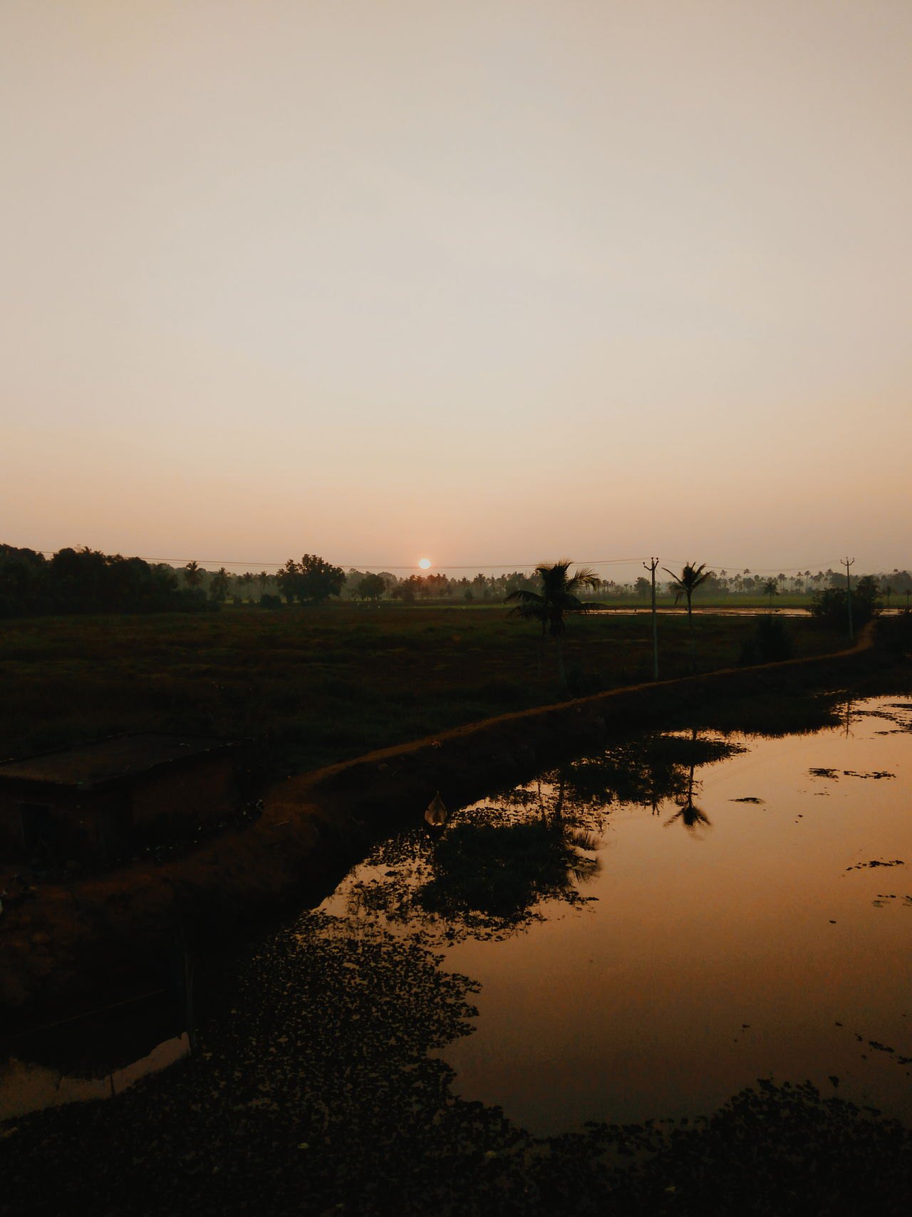 Sunset Dawn Water Reflection Sky Wet Landscape Silhouette Nature Lake Tree Outdoors Arrival Rice Paddy Beauty In Nature Scenics No People Day