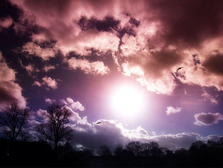 A beautiful sunset sky. Sky Enjoying The Sun Landscape Nature
