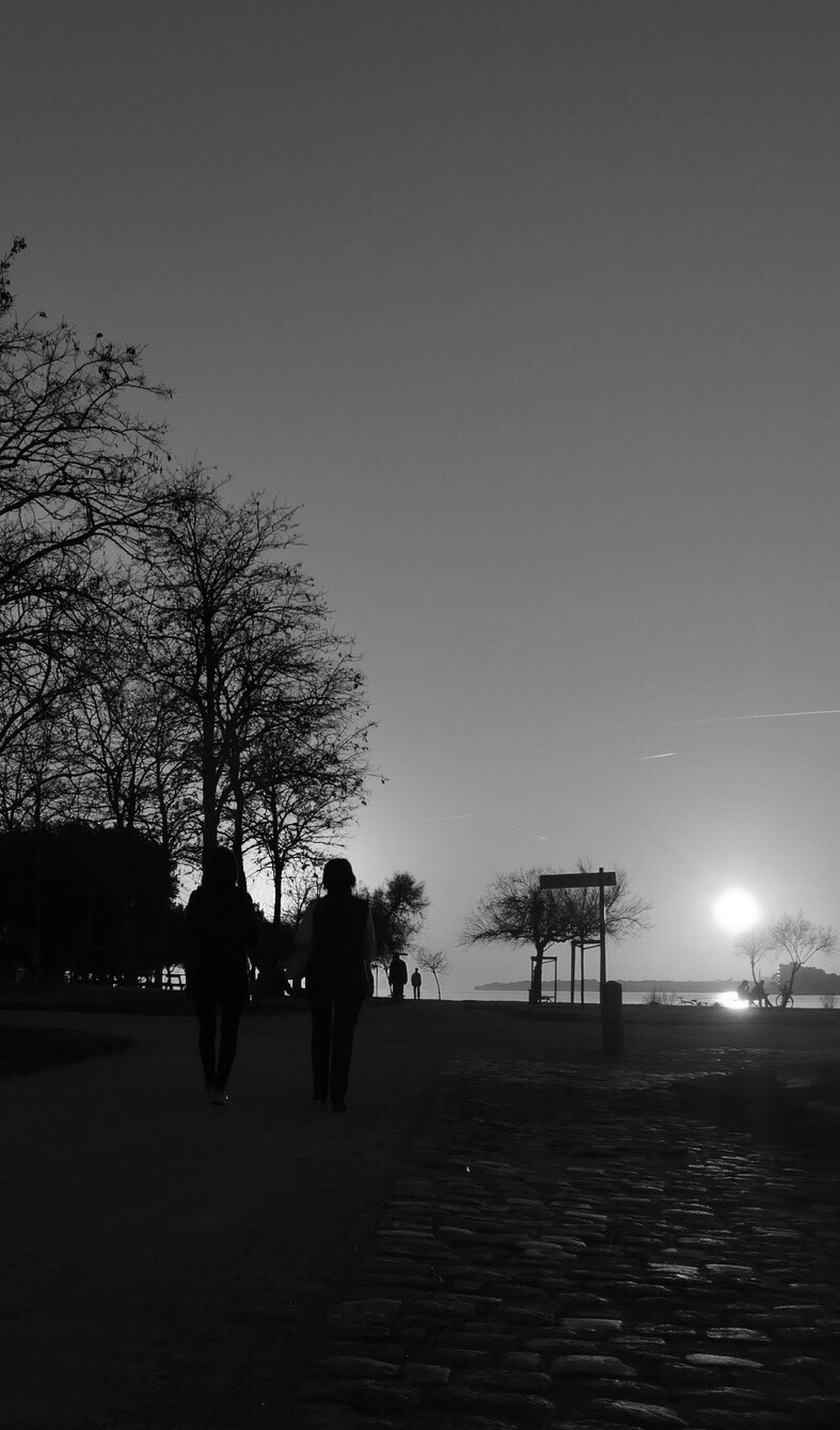 Blackandwhite People Walking  Sunset Real People Tree Walking Lifestyles Leisure Activity Sky Women Outdoors Men Clear Sky Nature Day Architecture People Adult