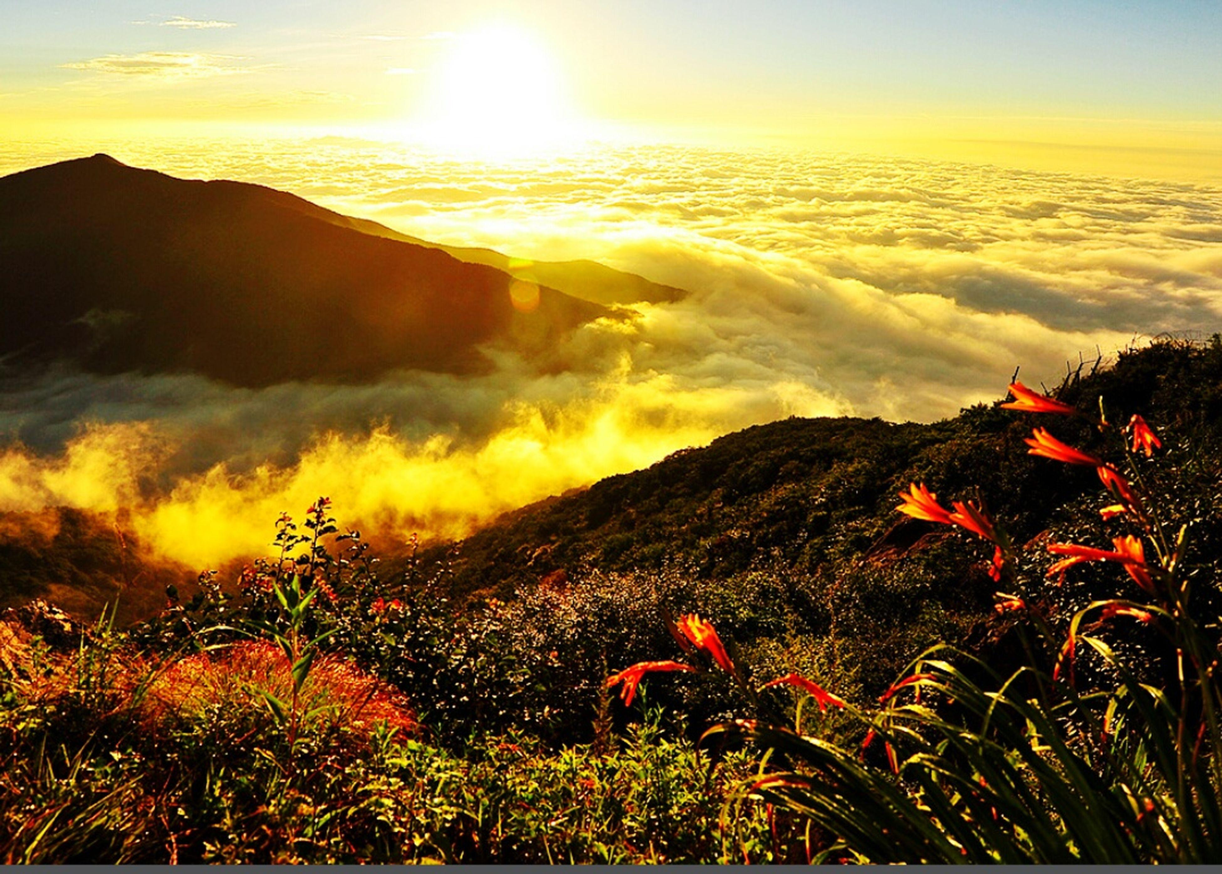 sunset, mountain, scenics, tranquil scene, beauty in nature, sky, tranquility, nature, landscape, orange color, sun, idyllic, mountain range, plant, sunlight, cloud - sky, non-urban scene, sunbeam, outdoors, growth