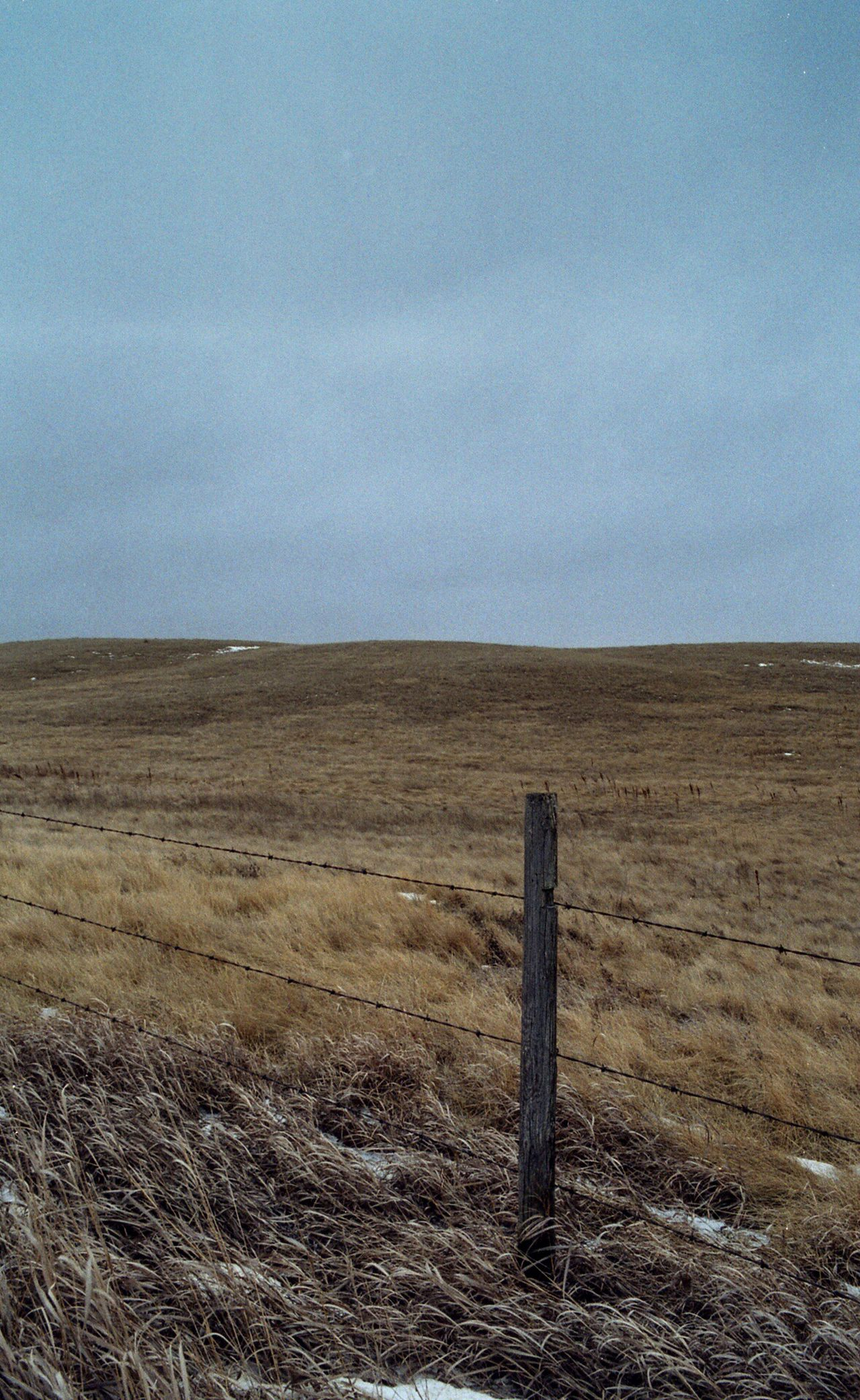 Landscape Film Photography Kodak200 Kodak Film Buyfilmnotmegapixels I Shoot Film Southern Saskatchewan Fences Overcast Skies Farmland Pasture