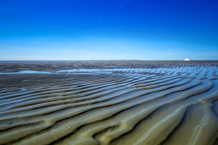 Sea Water Nature Beach No People Sand Blue Sky Outdoors Beauty In Nature Day Wave Bird Horizon Over Water Sea Life EyeEm Selects Beliebte Fotos Travel Destinations Beauty In Nature Nordsea Northsea Norderney Norderney Ist Mein Hawaii