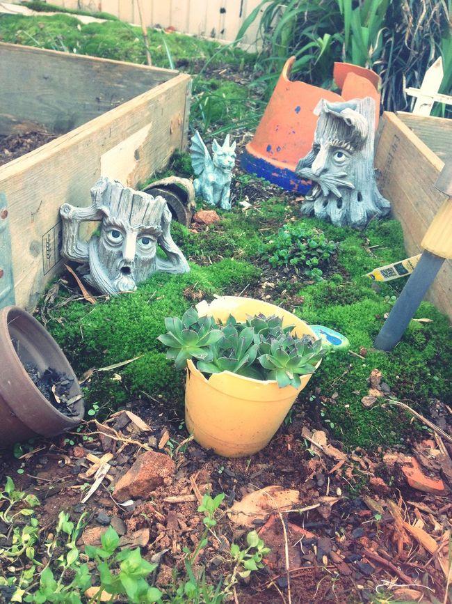 Fae garden for some 🍄 Beautiful Day Relaxing Faery Dwelling Fae Faerie Fae Garden