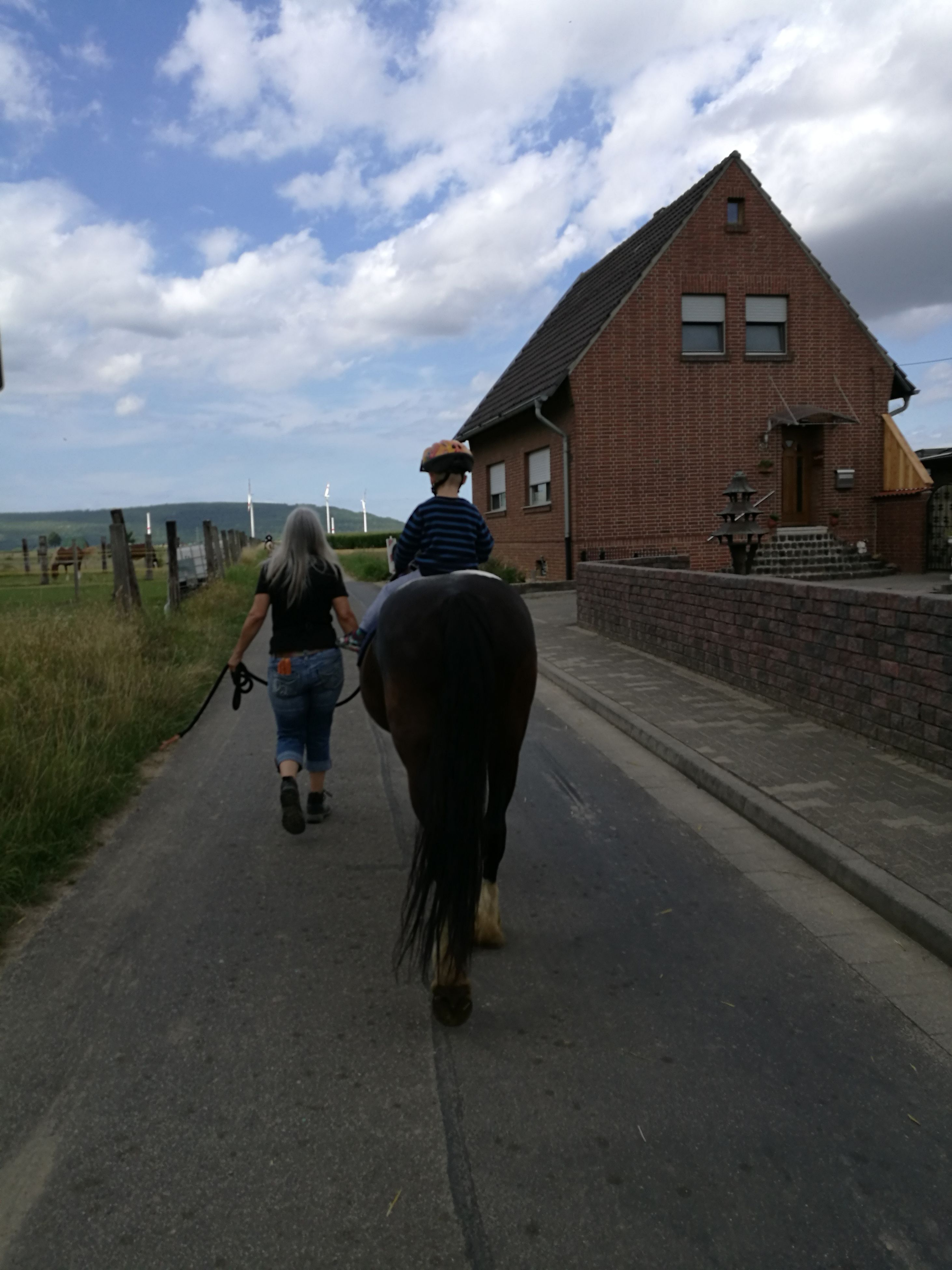 domestic animals, rear view, mammal, horse, one animal, cloud - sky, livestock, sky, real people, walking, built structure, full length, day, architecture, men, the way forward, transportation, building exterior, outdoors, lifestyles, road, one person, pets, nature, people