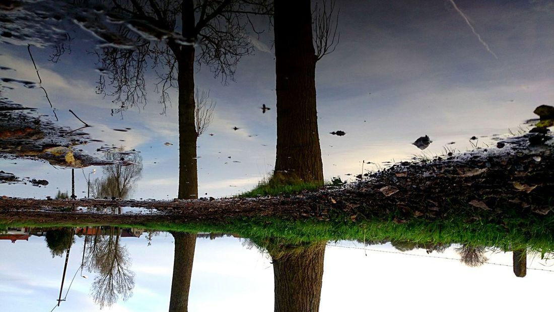 Sunday_flip EyeEm Best Edits Getting Inspired Water Reflections