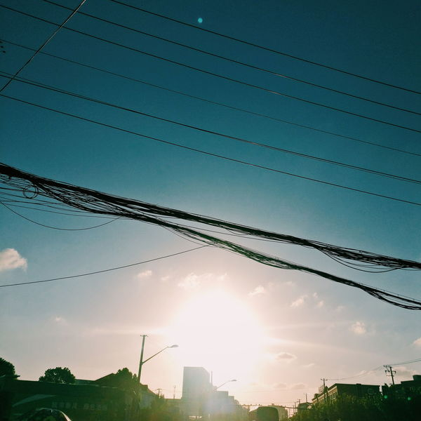 The Week On EyeEm Cable Outdoors Sky Day No People Electricity  Bird Nature Flying Beauty In Nature Telephone Line
