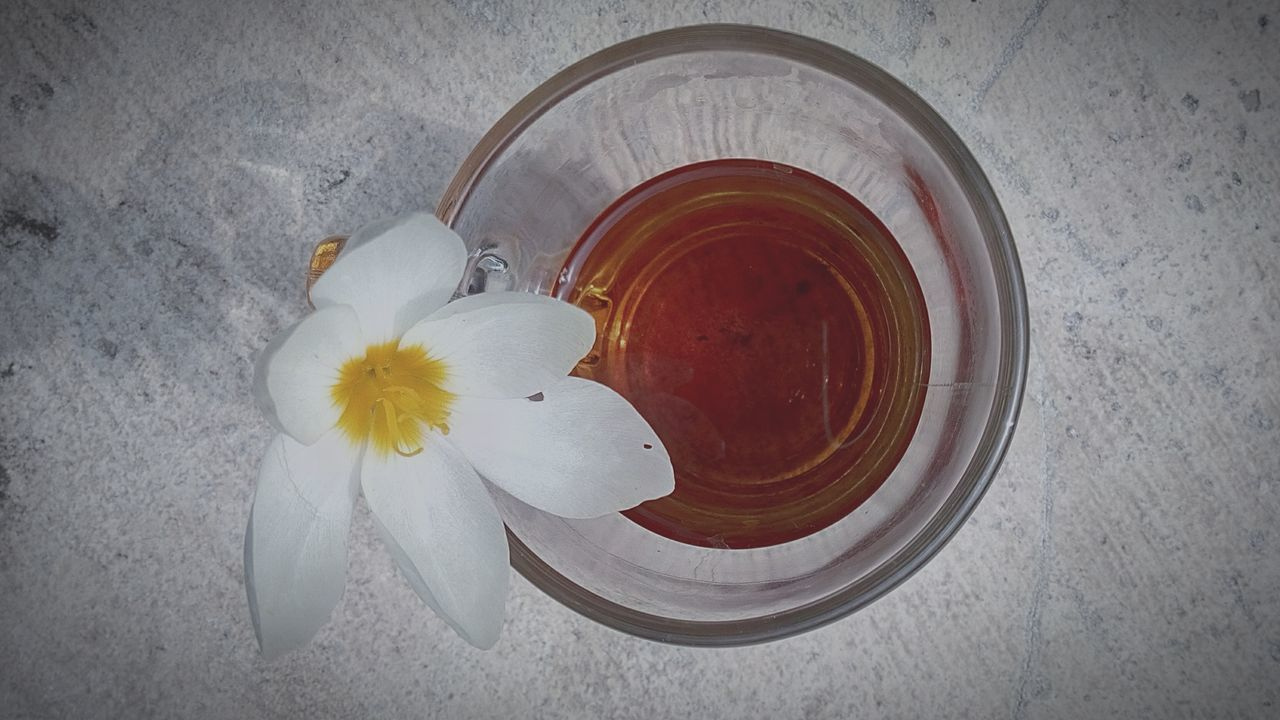 Drink Directly Above Drinking Glass Refreshment Yellow Alcohol Food And Drink High Angle View No People Flower Freshness Ice Tea Close-up Horizontal Outdoors Flower Head Day Growth Plant Springtime Window Drop Wet Growing Water