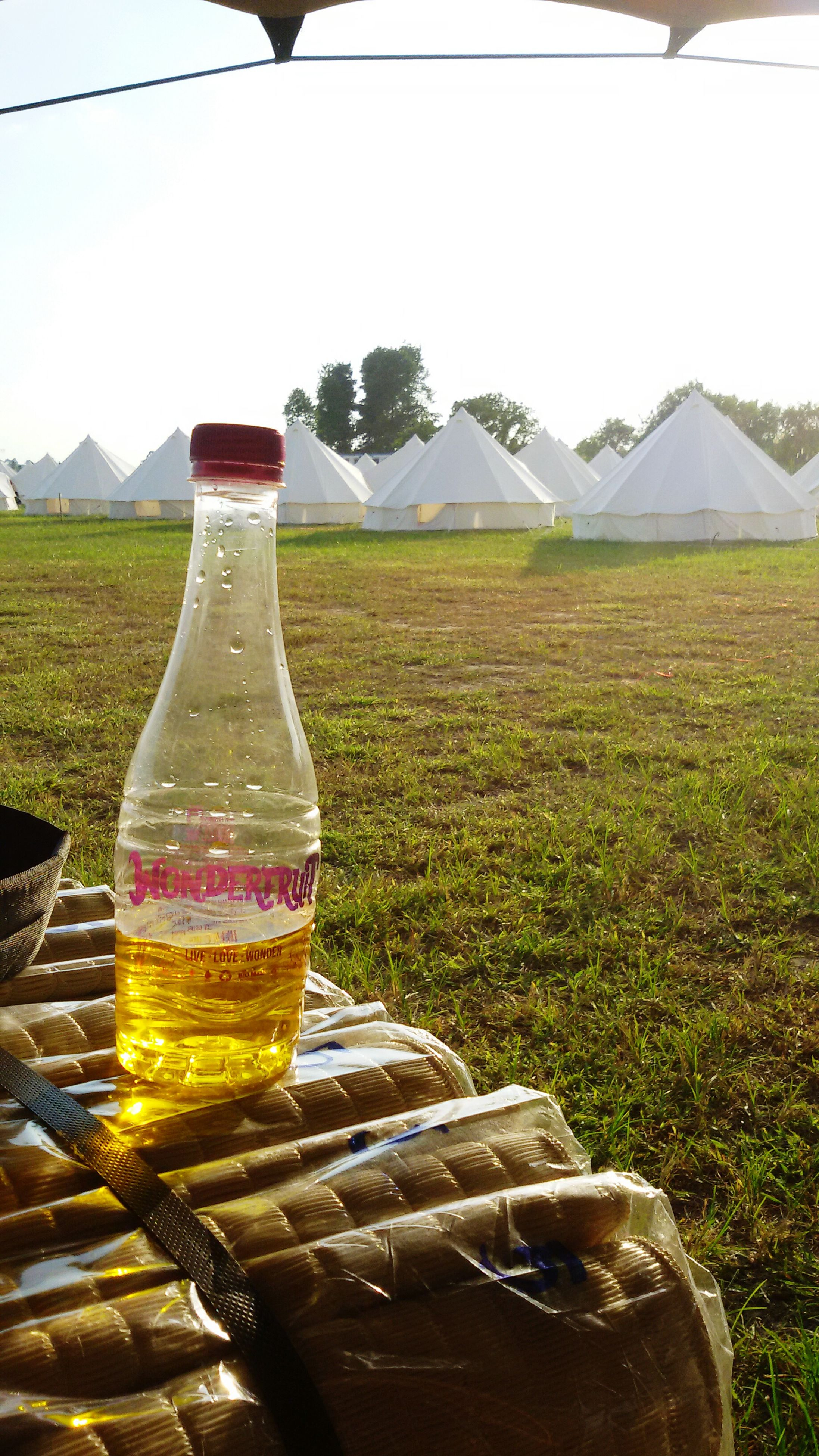 food and drink, drink, refreshment, grass, field, freshness, drinking glass, landscape, alcohol, table, green color, day, sunlight, mountain, outdoors, still life, close-up, bottle, tranquility, nature