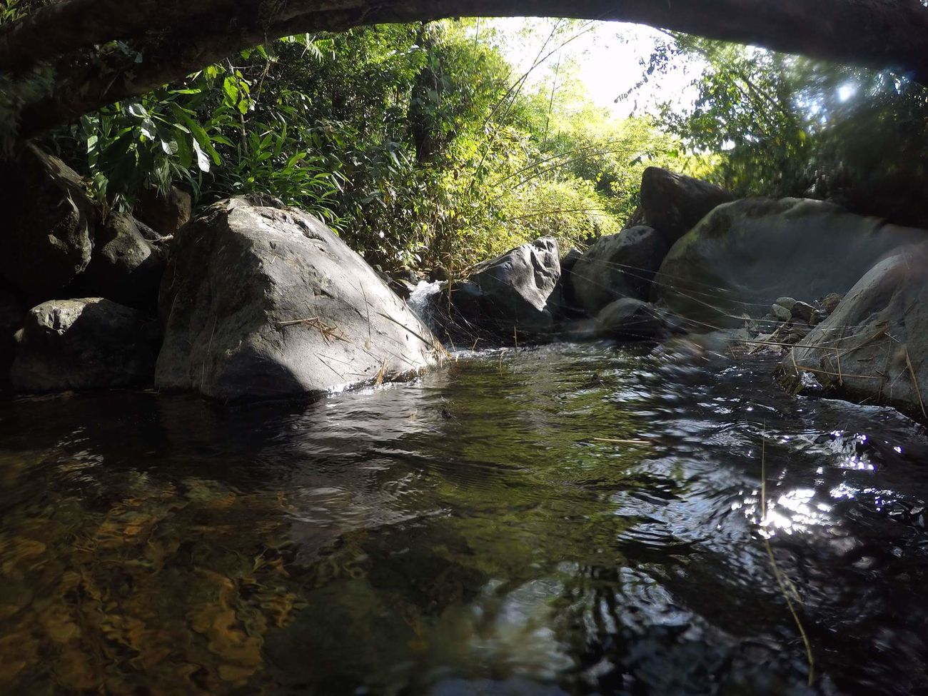 Rock Nature River Non-urban Scene Tranquility Green Nature Beauty In Nature Tranquil Scene Flowing Water GoPrography Goprouniverse Goprophotography Gopro Shots Goprohero4 Gopro Colombia