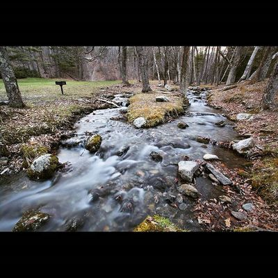 Lulu Brook in Pittsfield State Forest : : Pittsfield PittsfieldMA IntheBerkshires Berkshires Theberkshires Igersnewengland Igersmass Igers413 Landscapelovers Landscapeshooters Landscapephotography Optoutside Naturephotography Nature_shooters Natureaddict Allnatureshots Naturephoto Outdoorphotography Newtopographics Yetmagazine Photozine Shootermag Agameoftones Way2ill Yankeemagazine artofvisuals fotoguerrilla PhotoOfTheDay picoftheday artoftheday