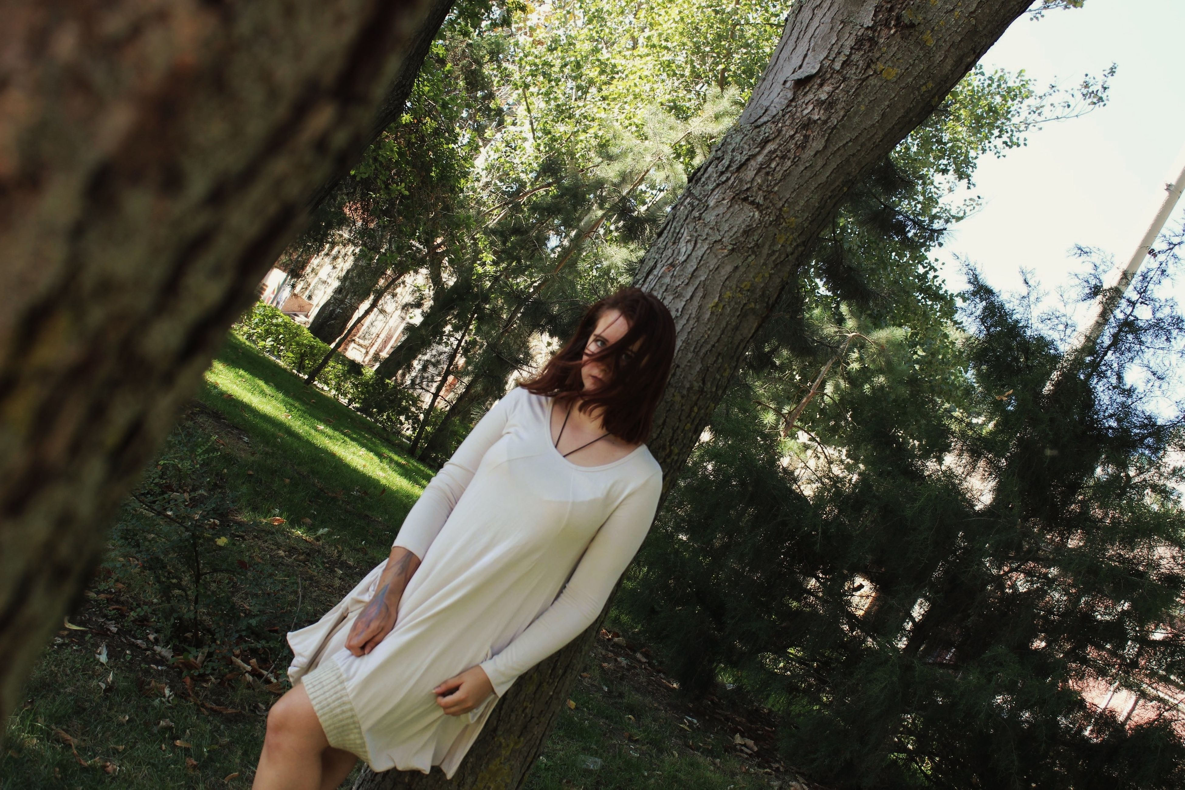 tree, tree trunk, lifestyles, leisure activity, young adult, young women, forest, person, growth, sitting, branch, casual clothing, three quarter length, nature, day, holding, outdoors, relaxation