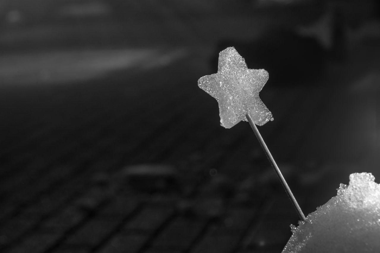 Alone Art Close-up Dark Hope Ice Leipzig Love Saxony Snow Star Village Winter