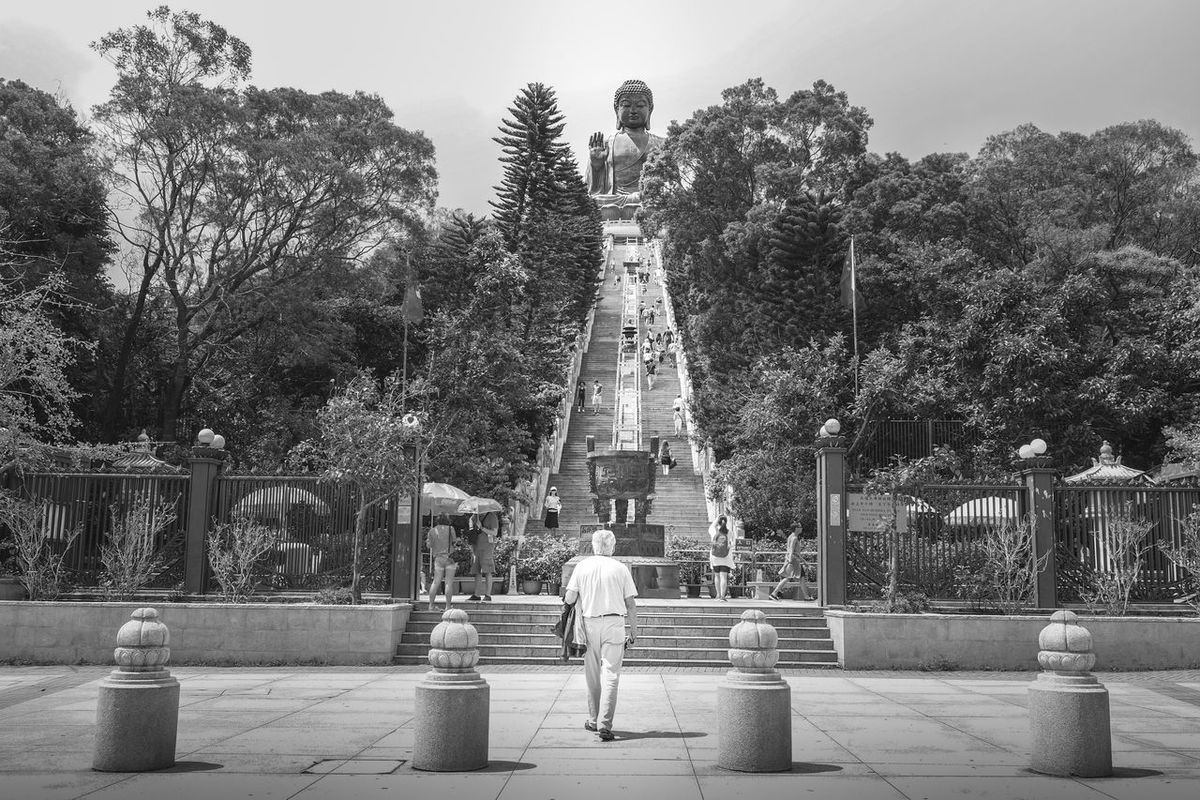 Ready to walk your way up? Tree Rear View Full Length Lifestyles Leisure Activity Fountain Day Person Solitude Outdoors Park Bench Nature Diminishing Perspective Tranquil Scene HongKong Hk Photography Today First Eyeem Photo
