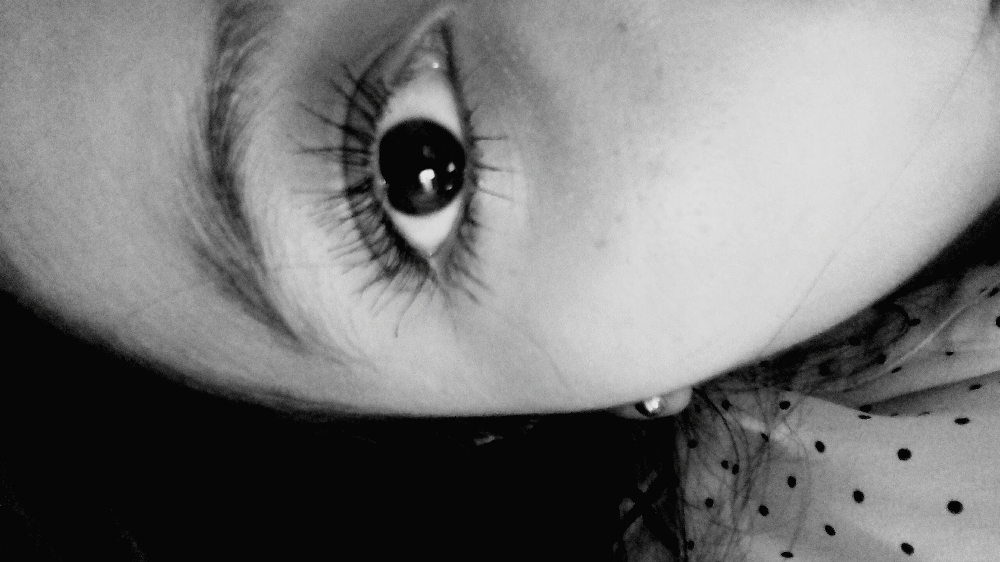close-up, looking at camera, portrait, indoors, human eye, human face, headshot, part of, eyelash, eyesight, sensory perception, front view, extreme close-up, lifestyles, human skin, detail, animal eye