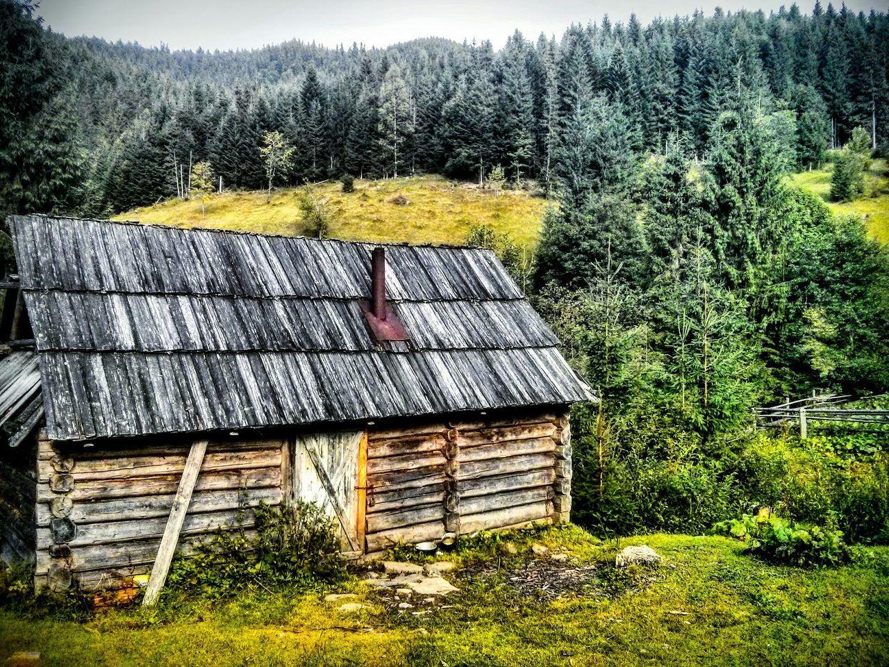 Ukraine Karpathian