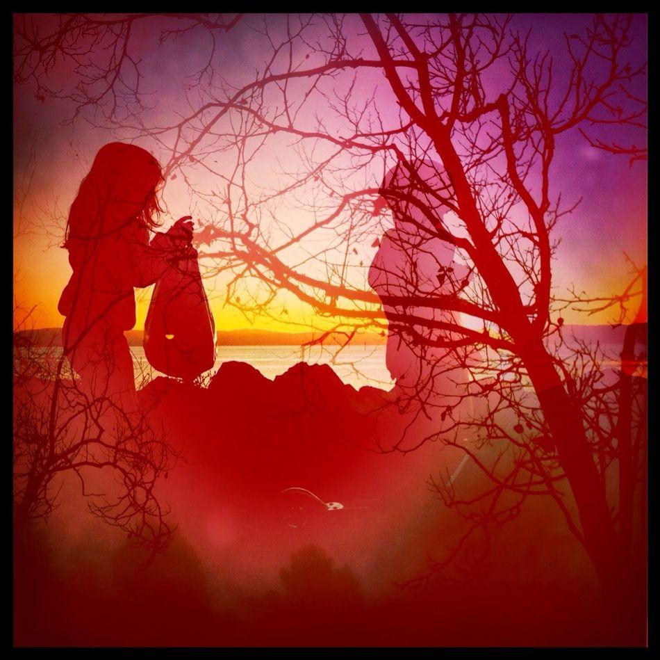Silhouette at Shoreline Park Ina's 1969 Film Silhouette No Flash