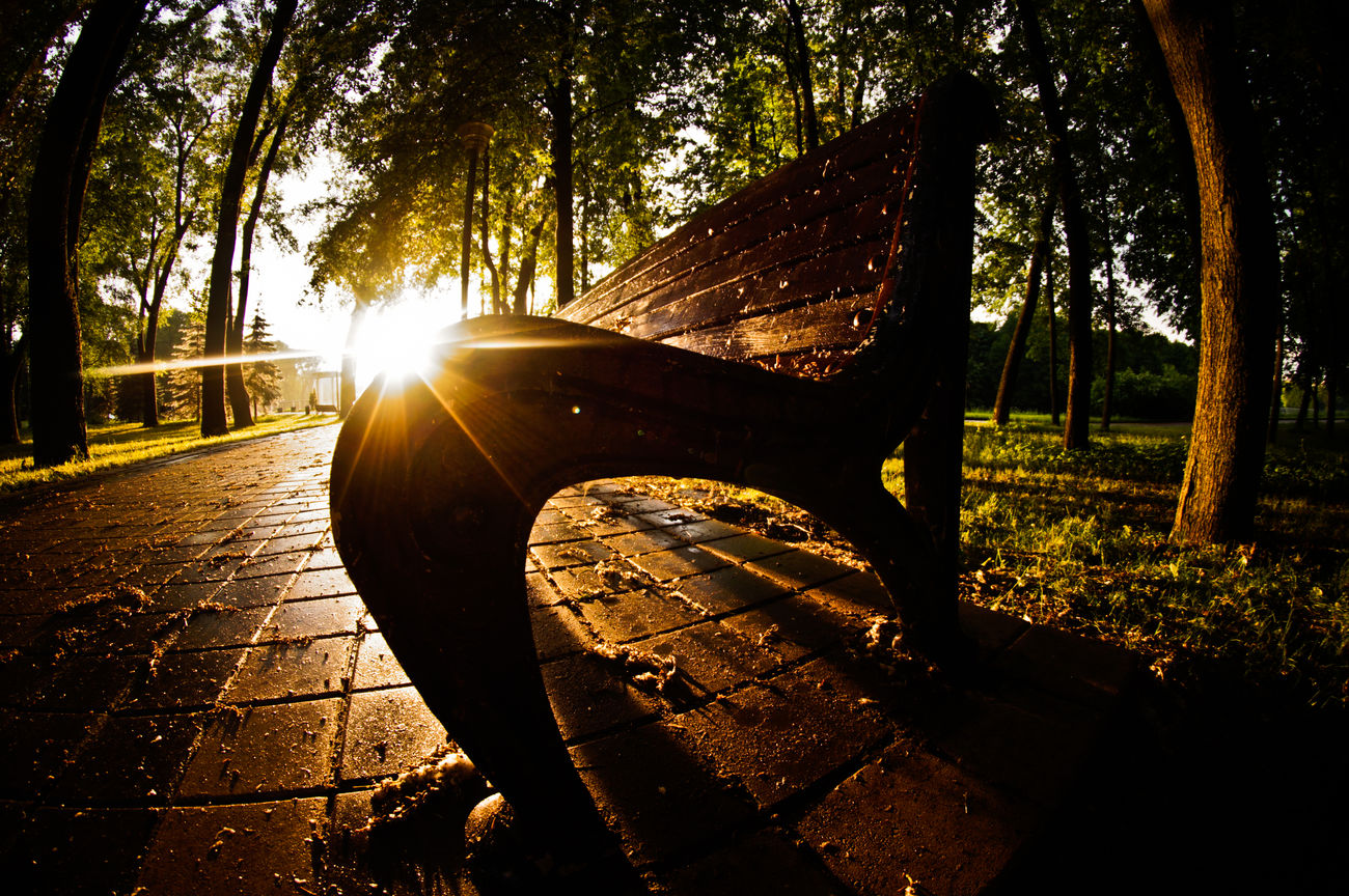 Just a bench. Tree Road Nature Outdoors No People Landscape Landscape_photography Belarus Minsk Landscspe Beauty In Nature New Talent This Week Street Photography Sunny New Talents New Talent Welcome Weekly