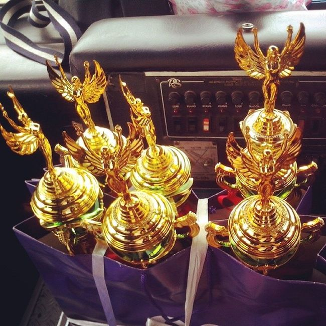 The trophys, in God's grace I will bring home 1 of them. MBI2014 IGDaily SaveIndonesianRhino March2014 PictOfTheDay ByHisFavor