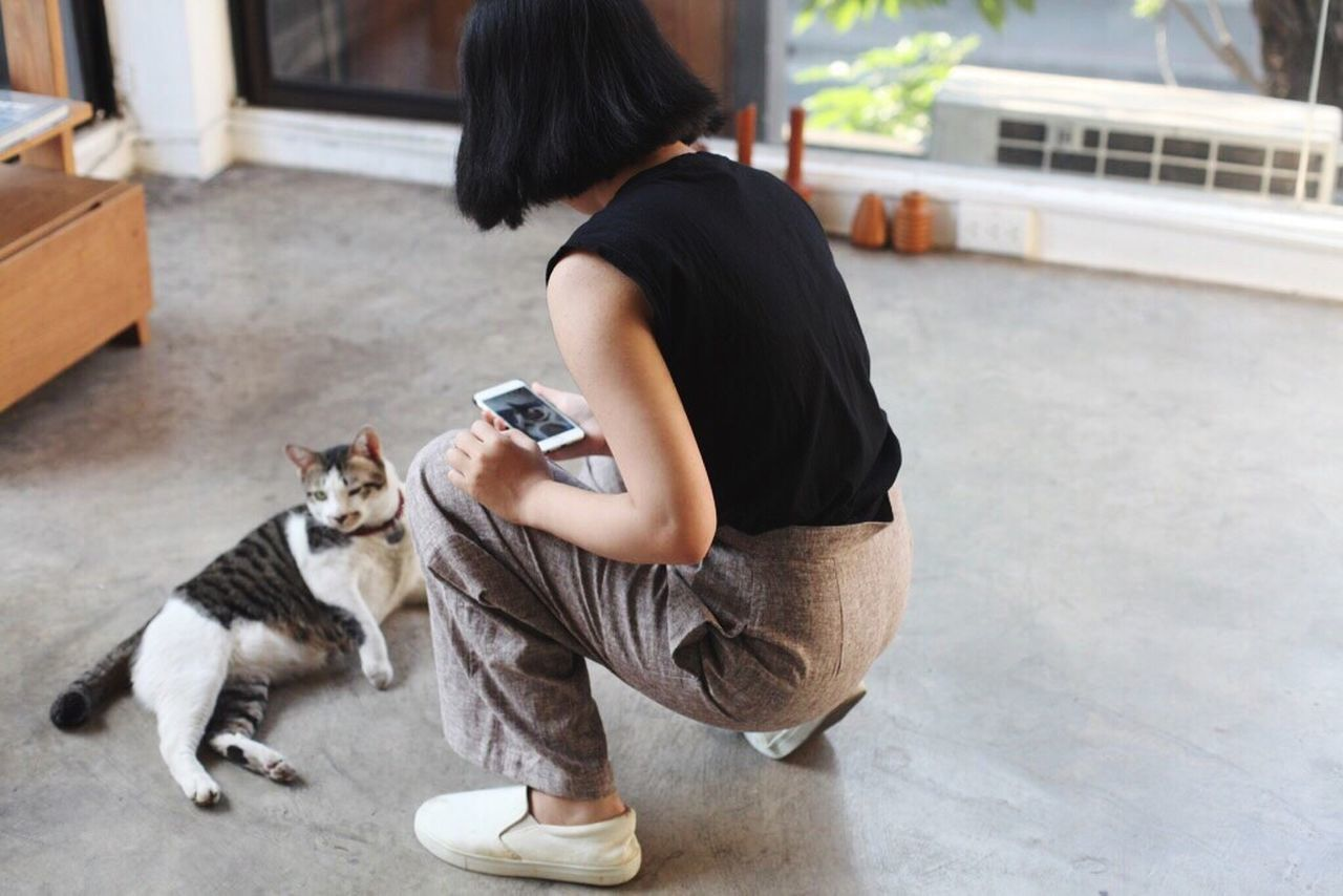 pets, one animal, dog, animal themes, one person, domestic animals, domestic cat, real people, day, mammal, sitting, outdoors, full length, feline, adult, people