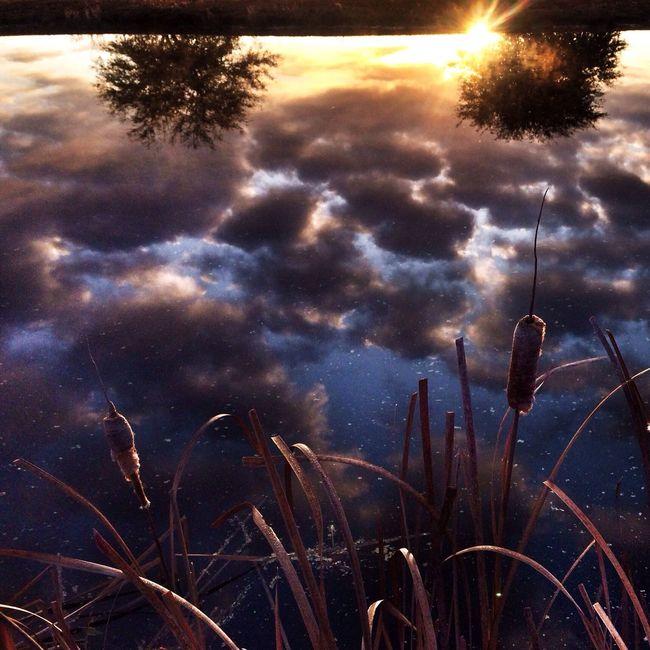 Nature Landscape Sunrise Water Reflections