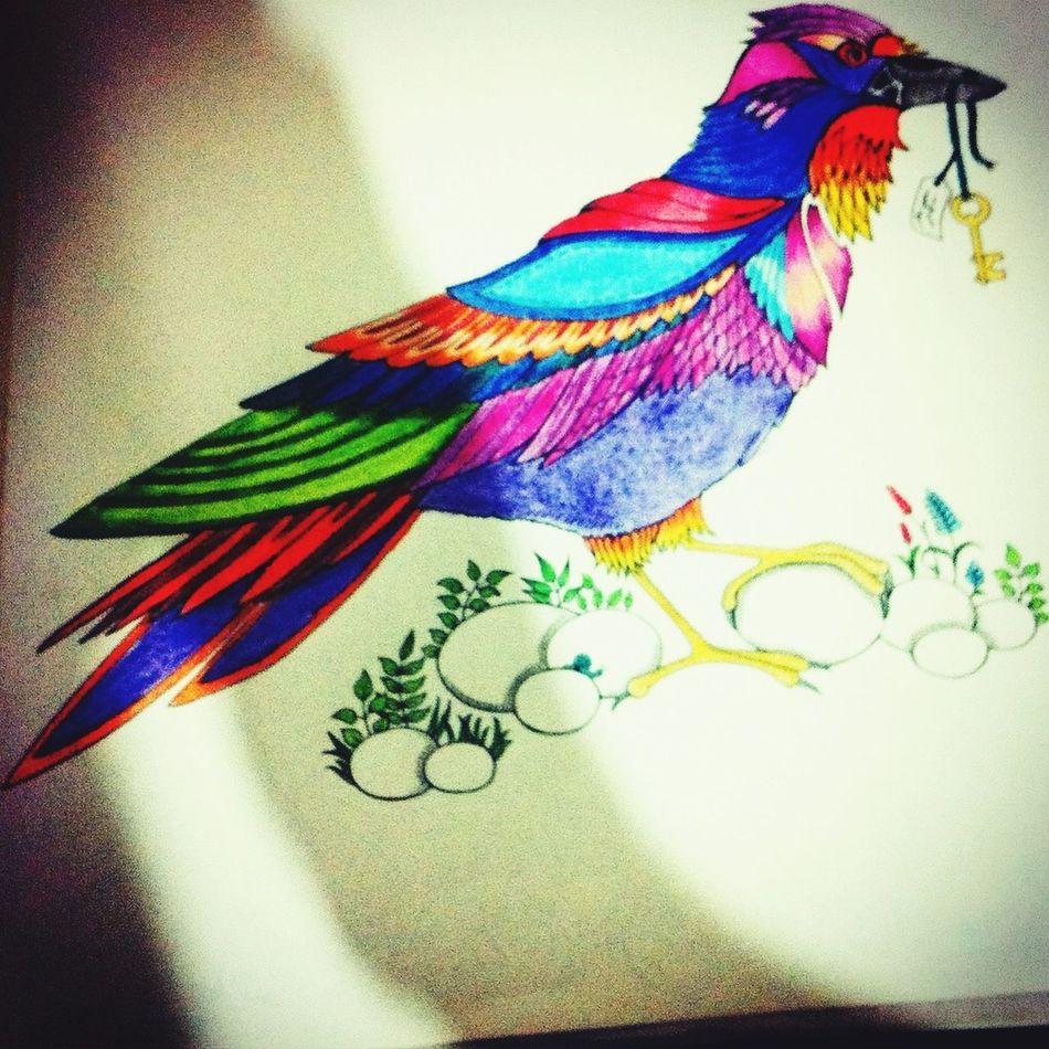 Hello World Florestaencantada Draw Pintura Passaro Birds