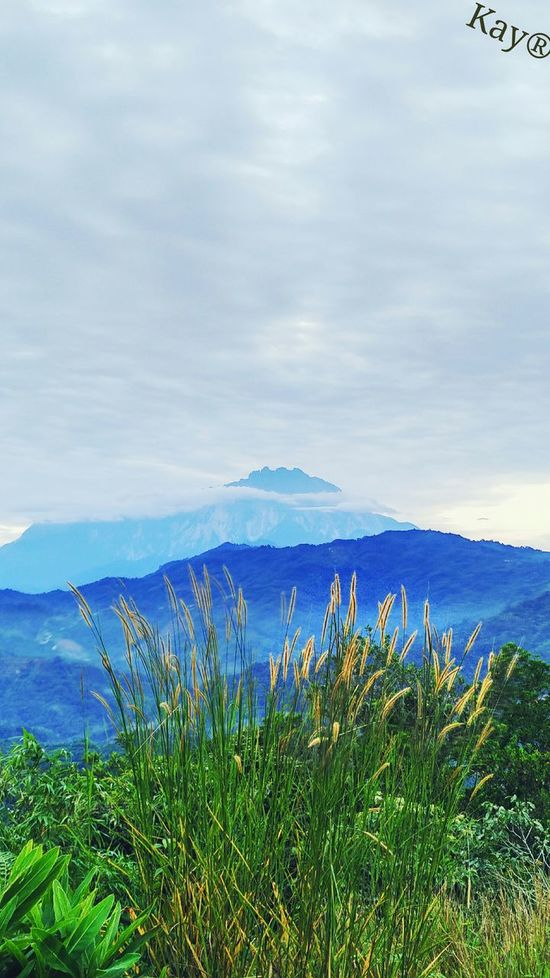 Mount Kinabalu Blue Morning View Beauty In Nature Hilltop View Hiking View St. Veronica Hill Sabah Borneo EyeEmNewHere