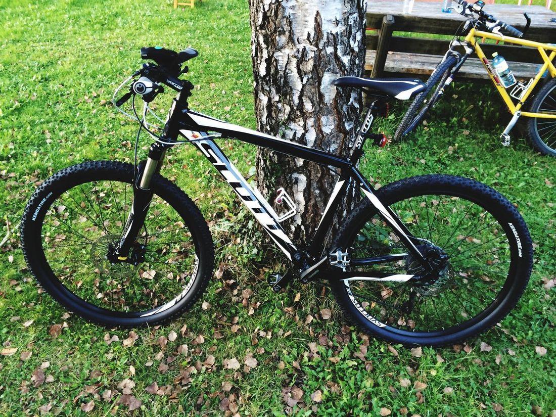 Bisiklet MTB Mountainbike Scottaspect Hardtail Mtb Love Bycicle