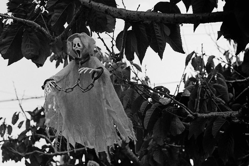 Hanging Blackandwhite Ilford Xp2 400 Film Canonetql17