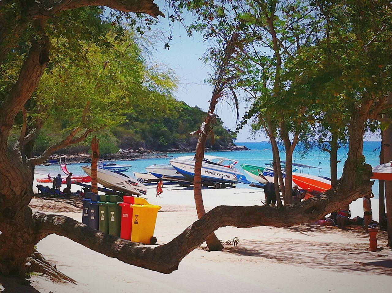 Beach View 🌻🍃🌴
